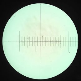Microscope Reticle